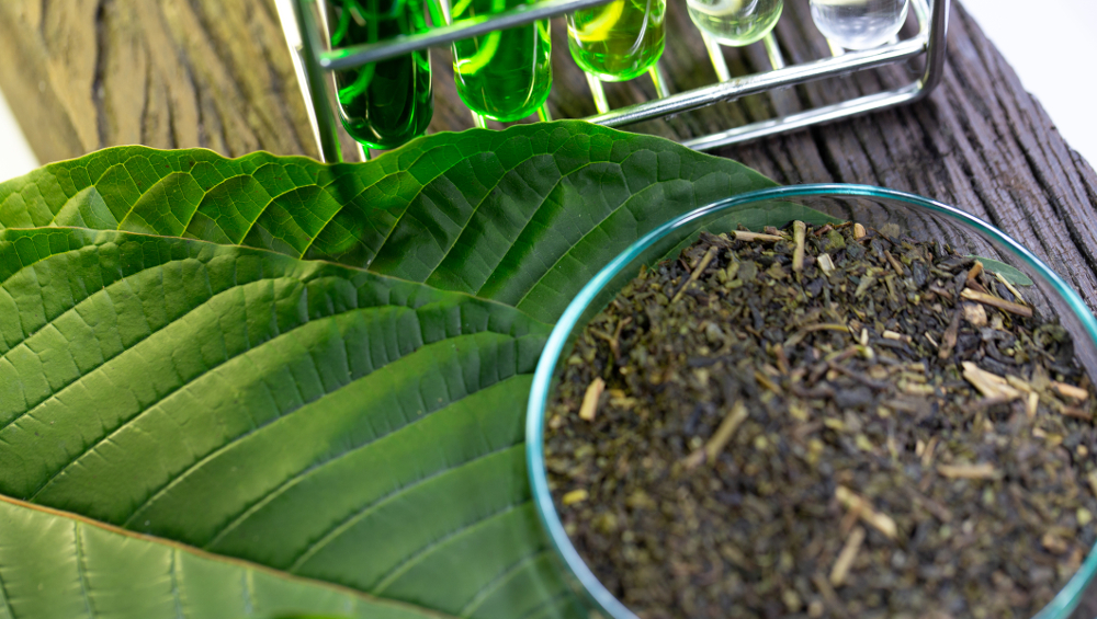 Need A Thriving Business? Concentrate On Kratom Leaf!
